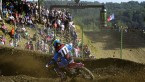Loket and more domination by Romain Febvre